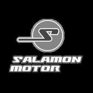 webpole partner salamon motor sopron